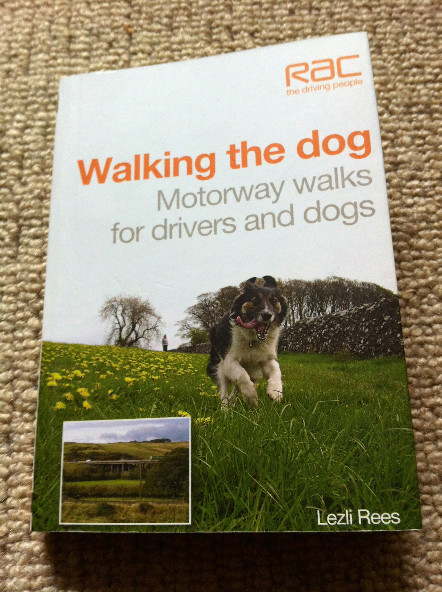 Motorway walks for drivers and dogs