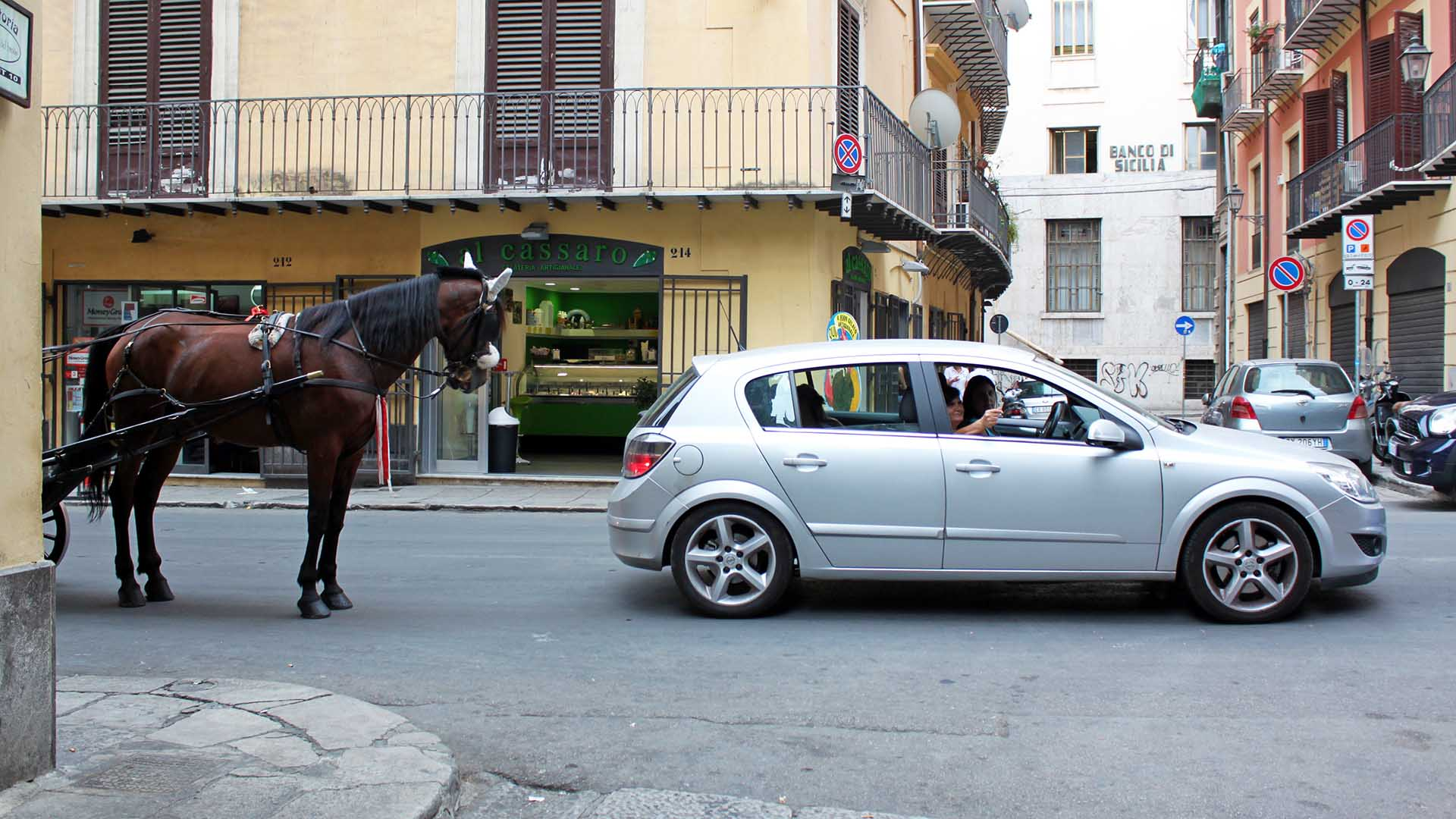 Horse and Opel Astra in Italy